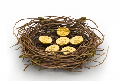 Coin In Nest by renjith krishnan