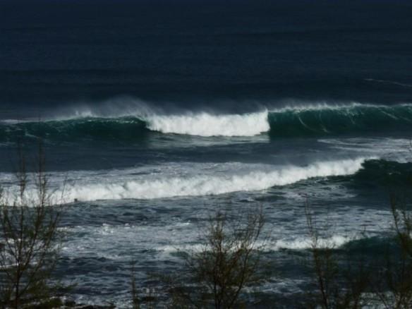 """""""Lo que dicen las olas"""" por Julio Aedo"""